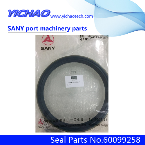 Sany RSC45 Heavy Container Forklift Spare Parts