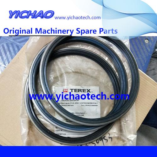 Genuine Reach Stacker Port Machinery Spare Part Seal 2294.157.0001cn