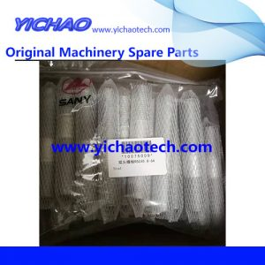 Original Sany Container Equipment Port Machinery Parts Stud 10075009