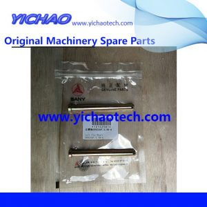 Original Sany Container Equipment Port Machinery Parts Left Pin 12142581