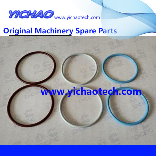 Original Container Equipment Port Machinery Parts Cummins O Ring 3068959