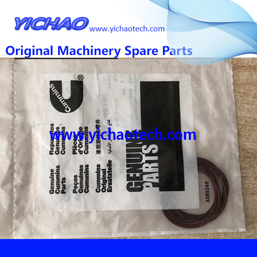 Genuine Container Equipment Port Machinery Parts Cummins O Ring 3070136