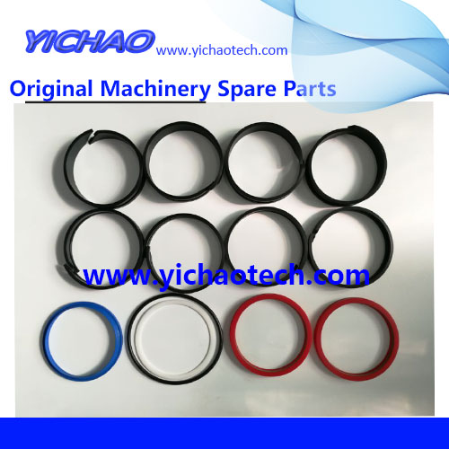 Genuine Container Equipment Port Machinery Parts Lifting Cylinder Kit 924015.0099