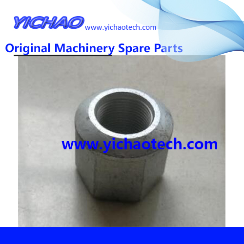 Original Container Equipment Port Machinery Parts Nut 10075008 for Sany